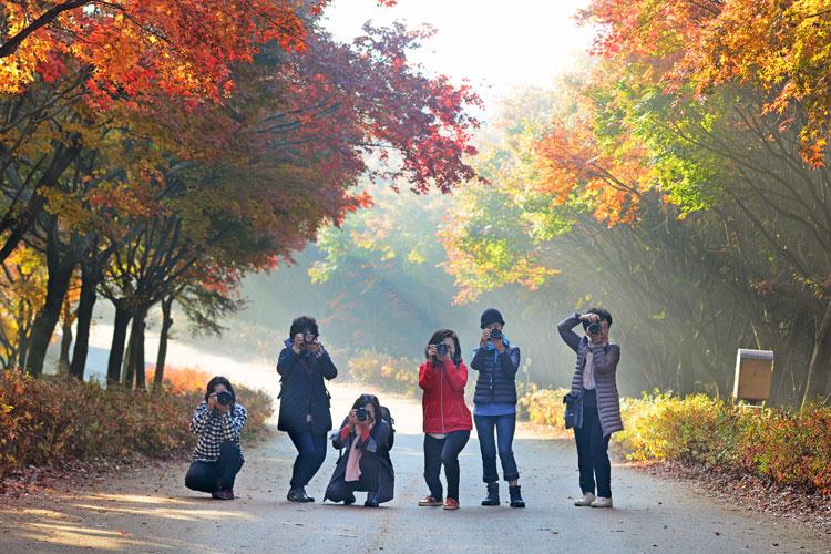 가을을 담는 사람들