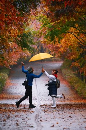 우산을 마주들고