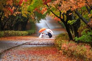 비오는 날의 추억