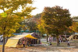 가을 속 캠핑장