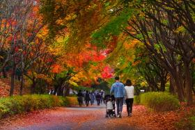 가을 행복