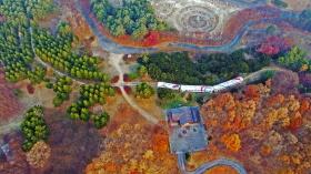 가을행 통일열차 (Unification Train for Autumn)