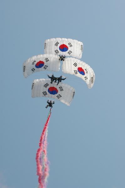 가작-태극기(김석범).jpg