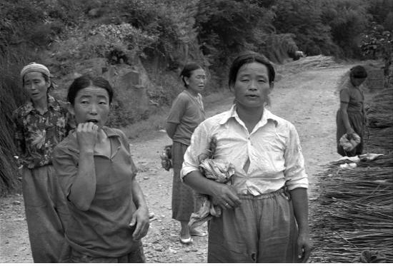 경남 하동 묵계리(1984)